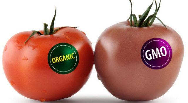 IZBJEGNITE I SPASITE SE NA VRIJEME: Evo kako da na polici prodavnice prepoznate GMO hranu!