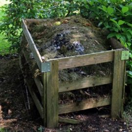 Napravite svoj prirodni kompost